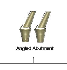 Angled Abutment