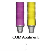 CCM Abutment