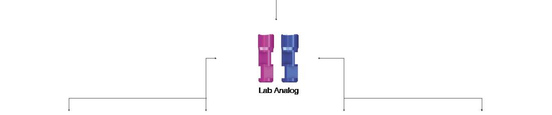 Lab Analog