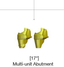 Multi-unit Abutment 17