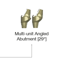 Multi-unit Abutment 30