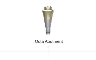 Octa Abutment