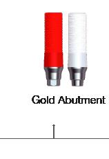 Gold Abutment
