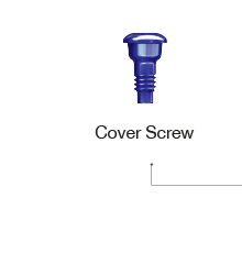 Cover Screw