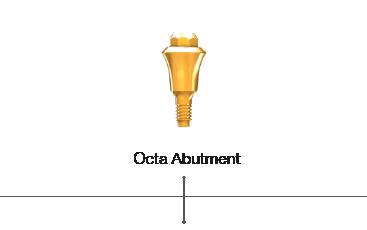 Octa Abutment
