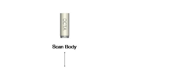 Scan Body