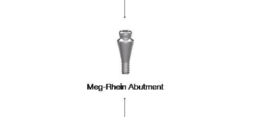 Meg-RheinAbutment
