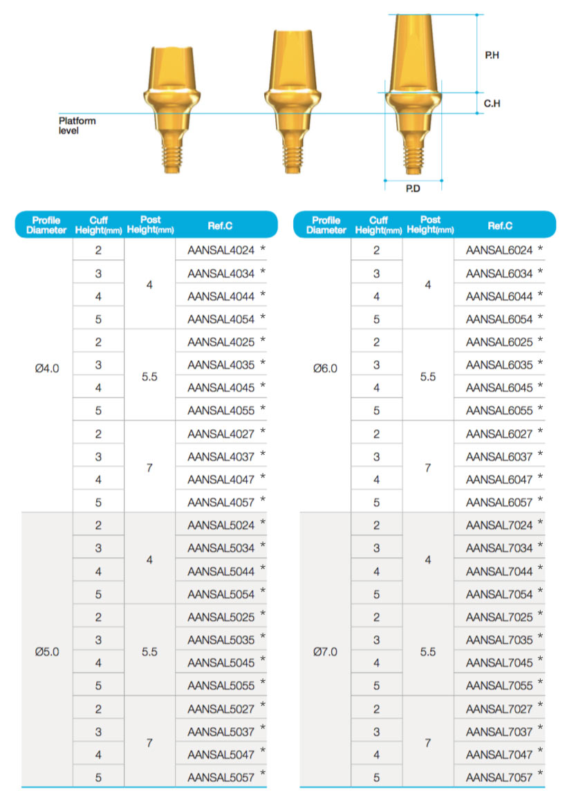 Solid-Abutment